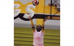 Williams achieves spike in passion through volleyball