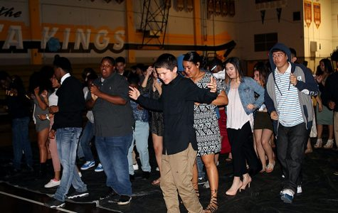 Sophomore class pulls off spring fling