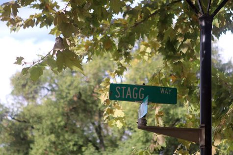 WEEKLY GALLERY: A new day at Stagg