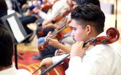 Sophmore Julian Garcia plays his cello following his section's movement.