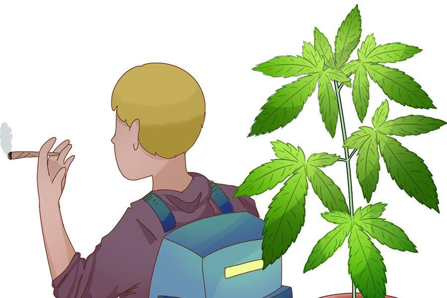 marijuana_WEB_DONE