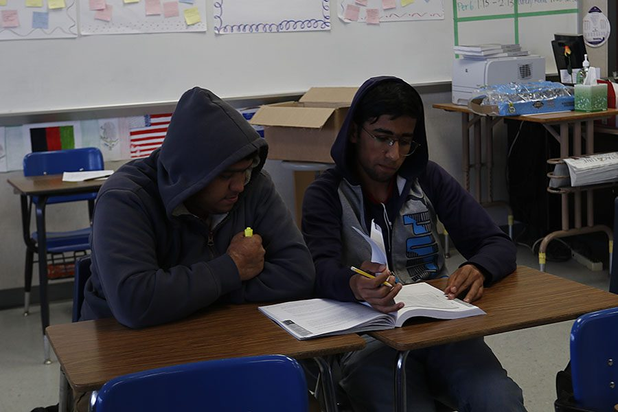 Juniors Golam Sawar and Muhammad Ejaz are reviewing sample essays from students in their bookelts.