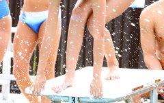 MENA TORRES: Quality strategies help improve performance