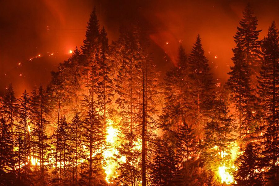 Teen causes fire ordered to pay $36 million