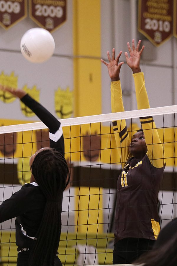 KARIS+CARTER%3A+Volleyball+used+as+an+outlet