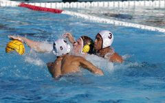 WEEKLY GALLERY: Stagg Boys Water Polo VS. Edison