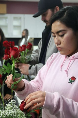 Senior Karina  Tafolla stands beside Agriculture teacher Daniel Barrett while arranging roses for Valentine's Day Grams. The students in Floriculture used techniques they've learned throughout the year to arrange the flowers in different shaped patterns. These bouquets were sold to staff and students.