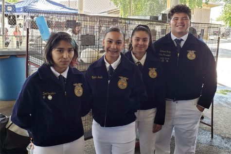 FFA WINS FIRST COMPETITION OF THE YEAR