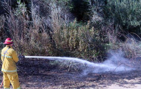 WILD FIRE NEAR CAMPUS